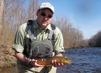A nice wild brwon trout caught fly fishing the Farmington River by guide Jeff Yates