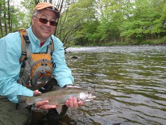 A nice rainbow trout caught while fly fishing the Farmington River in Connecticut
