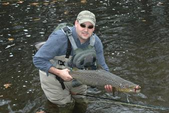 An Atlantic Salmon caught while fly fishing on the Naugatuck River in Connecticut